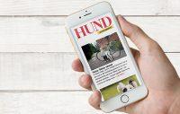 Få hundnyheterna direkt i din mejl