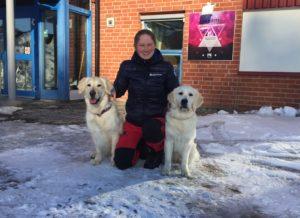 Nu öppnar Svedea Hundstipendietet för nya sökare