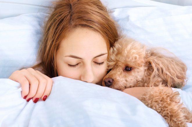 Sov bättre med hund