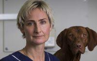 Avsnitt 1: Vad är god mun- och tandhälsa och varför är den viktig för din hund?