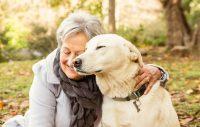 Att ge sin hund livskvalitet är äkta kärlek