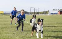 Canicross – fartfylld hundsport