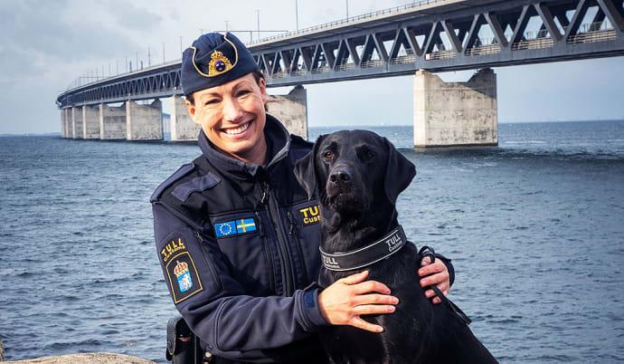 Atte är Årets narkotikasökhund 2019