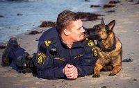 Bella är årets polishund