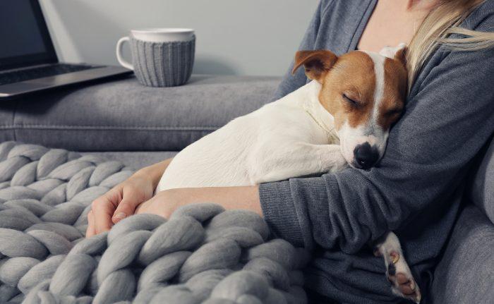 Patienter med hund lever längre