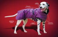 Annons från Dogman
