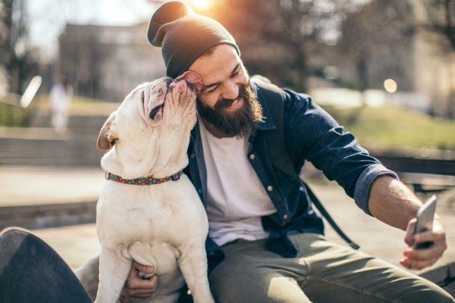 Kan sjukdomar smittas mellan människa och hund?