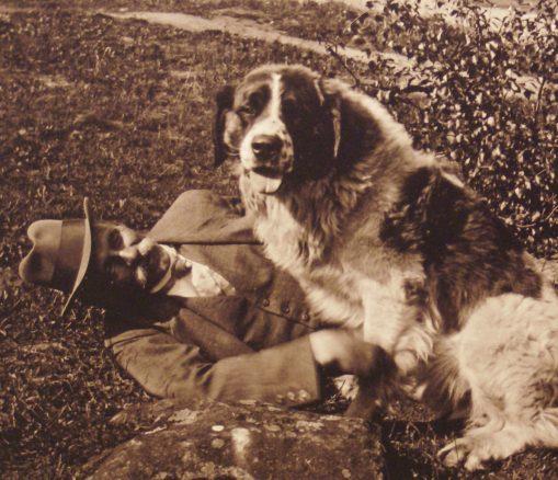 Hundar för hundra år sedan