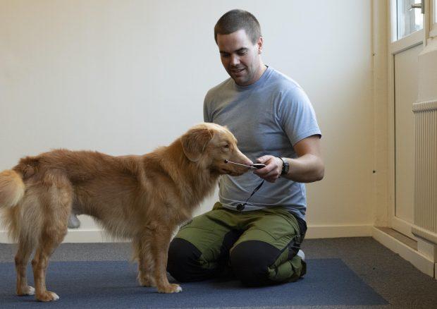 Vill du få hjälp av Härliga Hunds hundcoach Fredrik?