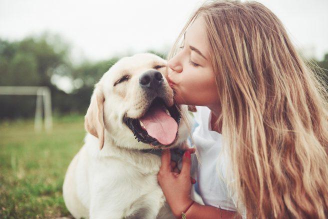10 saker som hunden förstår om dig