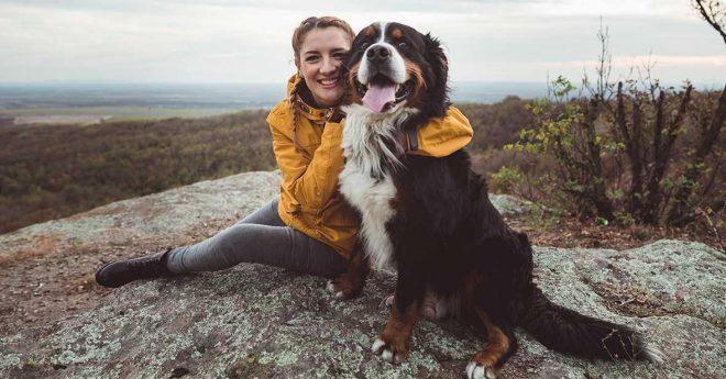 Svedea Hundstipendium