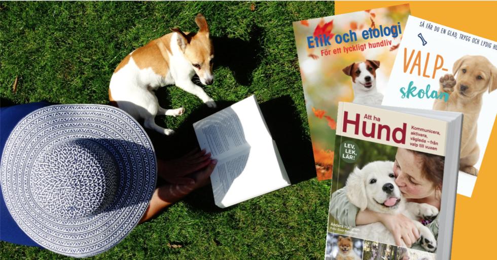 3 boktips om människans bästa vän
