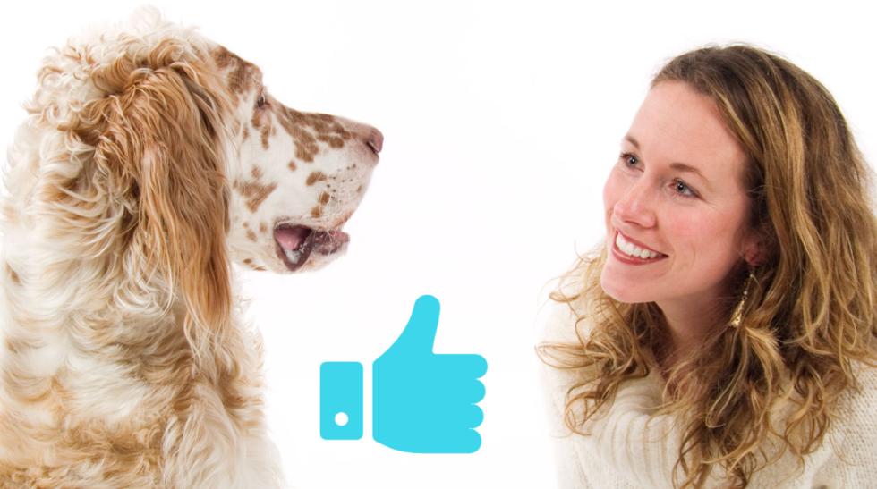 Förstår hunden vad du säger?